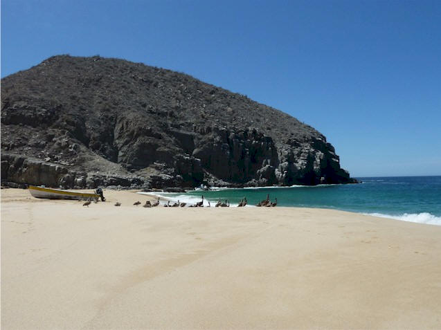 Todos Santos beaches.  Very special