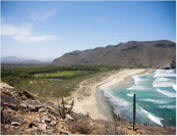 Click here for Beaches of Todos Santos
