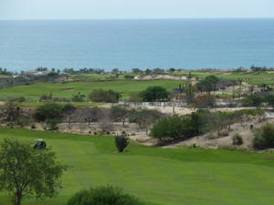 Cabo golf - The view can be distracting.