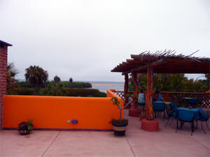 Best location in Todos Santos for relaxing and bird watching.
